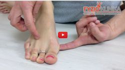 Transverse and Longitudinal foot arch