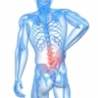 Exercises for removing the pain in the lumbar spine and sacrum